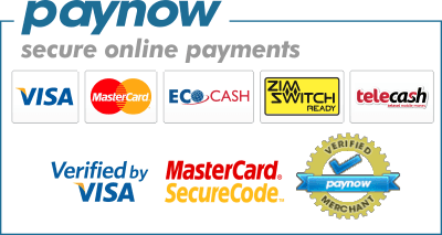 paynow-options